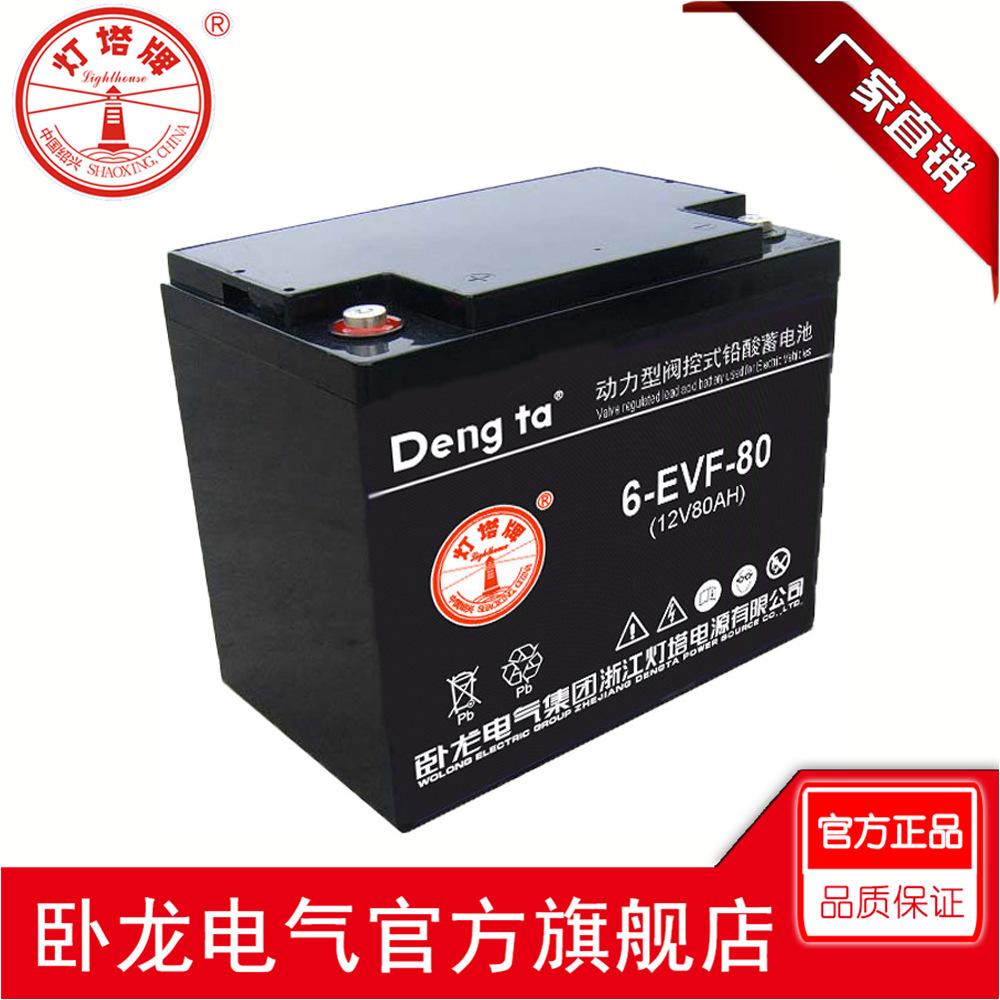 卧龙卧龙/灯塔 动力蓄电池 电动车电池组VEF
