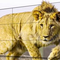 乐博展示屏教学大屏幕46寸1.8拼接屏高清晰播放画面