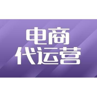 杭州 天猫代运营代运营上海五星TP服务商 宝翔电商
