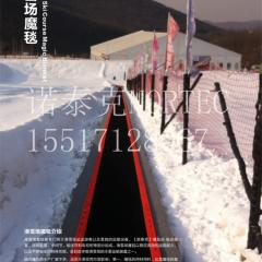 滑雪场输送设备 花纹皮带式雪地魔毯