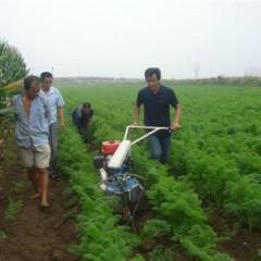 开沟培土机哪个品牌的比较好种生姜开沟多深才好田园管理机