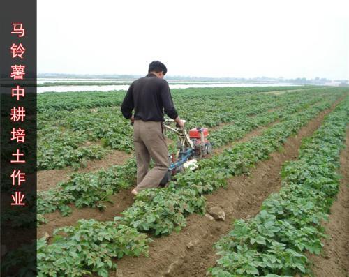 小型开沟培土机多少钱一台微耕机开沟器图片大全最先进开沟培土机