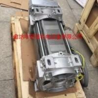 意大利ELMO45KW油侵式电机