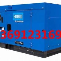 日本进口东洋柴油发电机TDL16000E-B