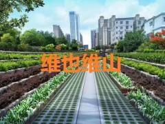 """江苏维也维山:生态挡墙重现""""水清岸绿"""""""