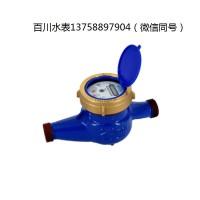 DN15 DN20 半液封水表