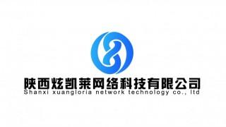 陕西炫凯莱网络软件开发