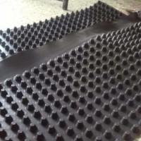 泰安凸壳型排水板绿化排水板厂家直销
