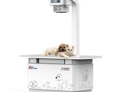 宠物dr如何使用?宠物dr使用注意事项介绍